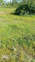 Tenasol properties: A 1/8 piece of land for sale limpar Ongata rongai