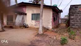 HOUSES FOR SALE WITH C. of O on a PLOT of 1000 sq.ms