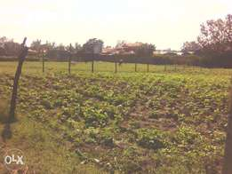 a 1/4 acre in lanet kiundu(opposite 3ka)