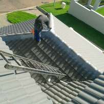 Painting renovation and waterproofing