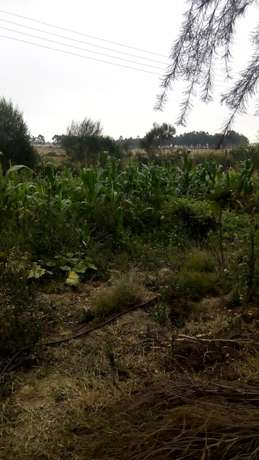 1/8 plots for sale Naromoru - image 5