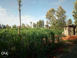 50 by 100 plot for sale at kanunga
