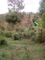 The most beautiful and amazing agricultural land One acre 2m.
