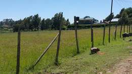 Eighth of an acre at Kamangu 500 meters from road