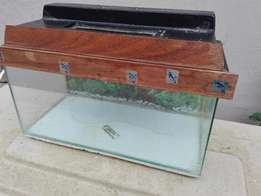Fish tank with assessors