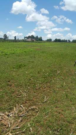 One acre in ilula 500metres off tarmac Elgonview - image 1