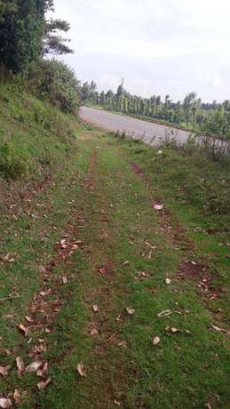 HOUSE and Land for Sale. Limuru - image 7