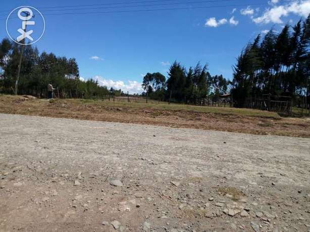 1 acre at 3.2 million Bamboo - image 2