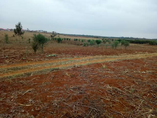 Mutundu Mangu investment plots Thika - image 5