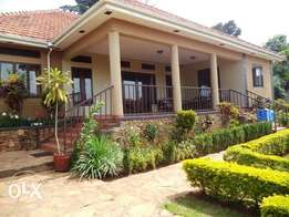 Furnished bangalow 3 bedrooms for rent near the UN base in Entebbe
