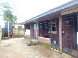 Urgent sale!! 12units of self-contained for sale At Imopoly Imo state