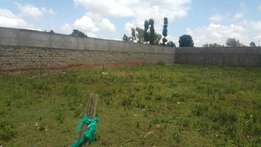 1/4 plot betterfarm/kimumu with title 250metres from tarmac