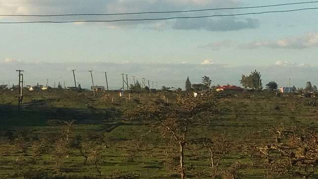 Plots and 1/4 acre ..very prime at an affordable price..Rangau centre Ongata Rongai - image 1