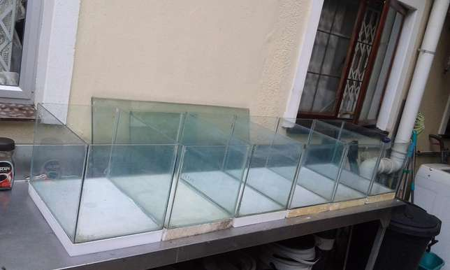 fish tanks for sale Queensburgh - image 4