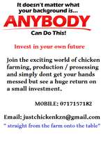 business opportunities in the poultry industry: follow the link