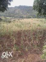 Prime Plots for sale, 50 by 100. Near Muranga town