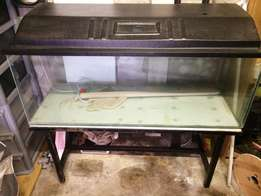 For Sale: Fish Tank & Stand