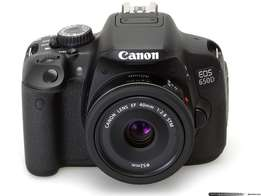 Canon 650D with 50mm and 70-300mm