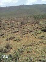 50 by 100 plots for sale at ndiuni nachu