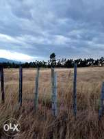 4acres suitable for subdivision
