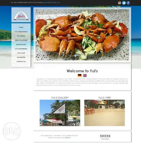 Get A Beautiful Professional Website For Your Business Mombasa Island - image 4