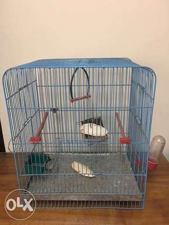 Cage for any bird