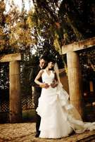 Wedding Dress (Pronovia Size 8) Alberton