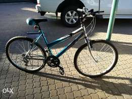 Brand new mountain bike up for sale