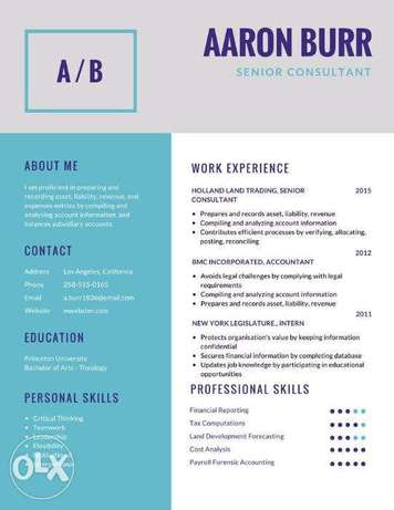 Give your CV/RESUME a Modern and Professional LOOK Victoria Island Annex - image 7
