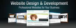 Professionl Website for Your Business