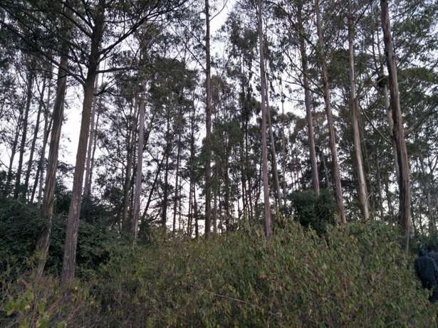 Land in Matasya Ngong, 8 Acres for sale Parklands - image 6
