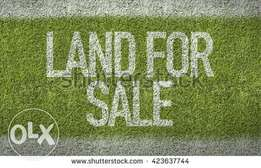 Land located along Naivasha Rd. (1/2 ACRE)