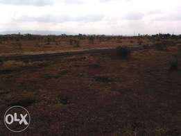 land for quick sale