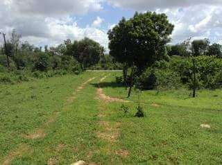Plots for sale Vipingo - image 2