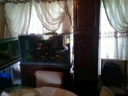 Big fish tank for sale comp