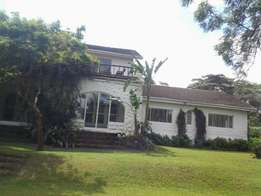 5 bedroom house, 3 detached sq,swimming pool and on 3 acres in Karen