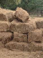 Rooi gras / Red grass bales