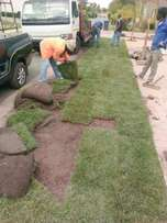 Kikuyu, LM,Evergreen Instant Lawn With Free Delivery.Call Paul