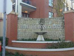 Very Spacious 1 Bedroom apartment in Brushwood.