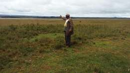 Vacant Land in Nyahururu Mairo inya.140 Acres.Adjoing Lake Olboosast .