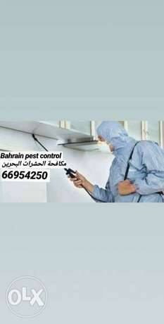Experienced pest control company
