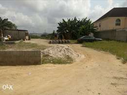One plot of land for sale at Eagles island