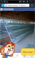 Iron Poultry Cage