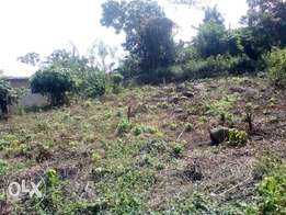 A full plot of land at Ibule, Akure, Ondo State