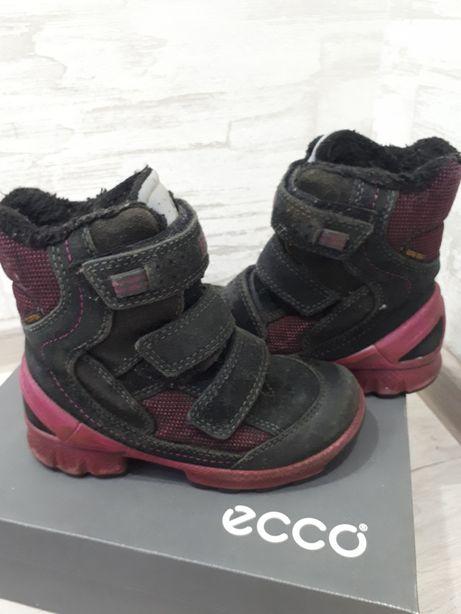 79c1c3632a9427 Сапожки Ecco Biom зимние термосапоги ботинки экко Дніпро - зображення 4