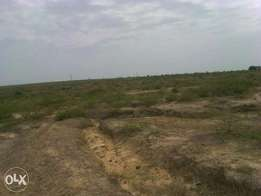 land 50 acres 3rd row neighbouring ketraco mombasa rd. Shangia