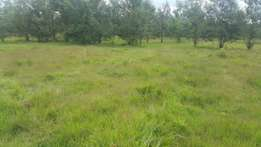 10 acres kapseret airport 4km off the tarmac