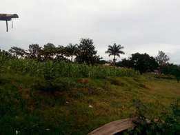 Land for sale at janyi Entebbe rd off kajansi