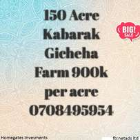 150 Acres Kabarak Gicheha Farm Nakuru West