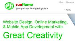 Professional Websites + Android + IOS application + Emails from R500 !